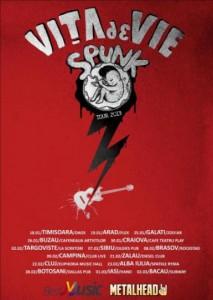 concert-vita-de-vie-la-sibiu 2013